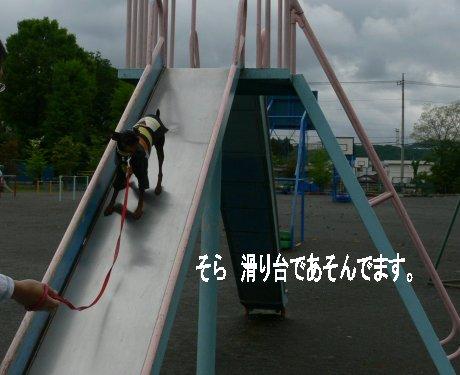momiji-sora3.jpg