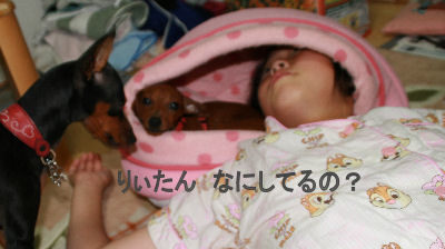 rii-sora-momiji1.jpg