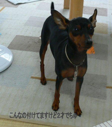 sora-10-kuchimoto.jpg