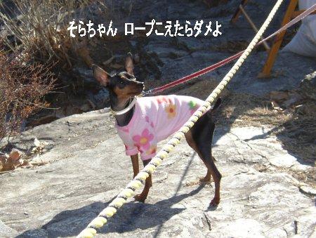 sora-12-iwadatami7.jpg