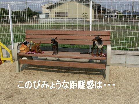 sora-13-duffysora4.jpg