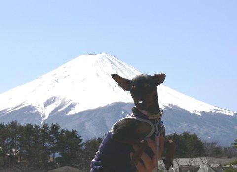 sora-13-fuji6.jpg