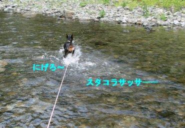 sora-kawa5.jpg