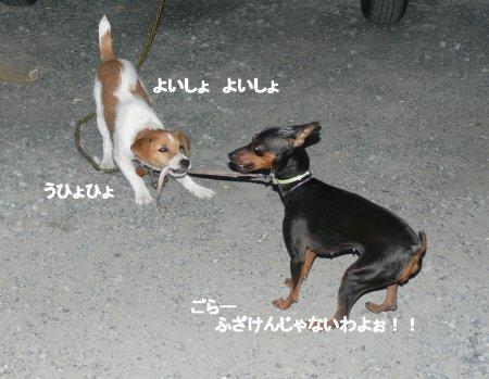 sora-moka7.jpg