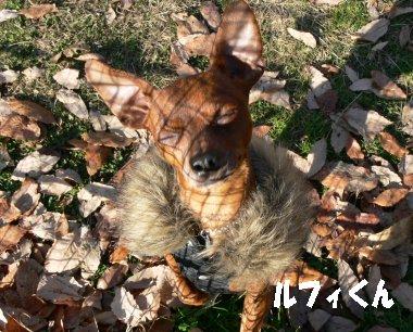 sora-sagamikopiku3.jpg