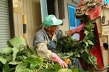 枝豆選別機 茎と葉と枝豆をわける