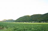 上城寺風景
