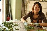 枝豆選別作業①
