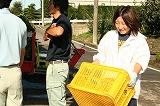 枝豆を水洗い場に運ぶ参加者