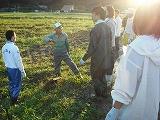 枝豆畑で話を聞く参加者