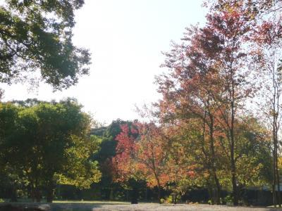 1112narapark14-1.jpg