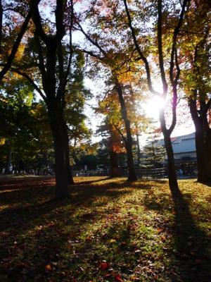 1112narapark23-7.jpg