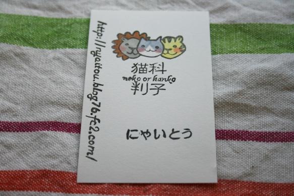 名刺(猫科3匹)
