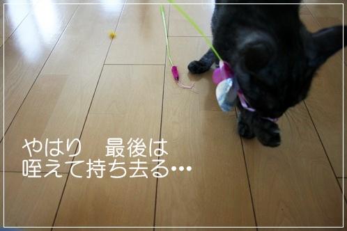 20100719-142016-009.jpg