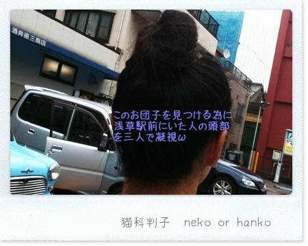 20101010-094901-アズキ姐さん