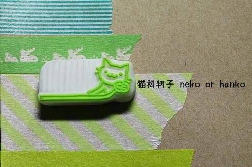 20110125-185544-001.jpg