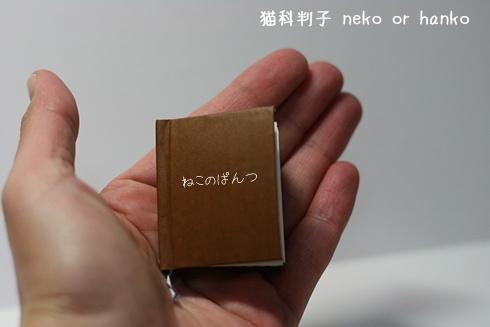 20110127-200559-007.jpg