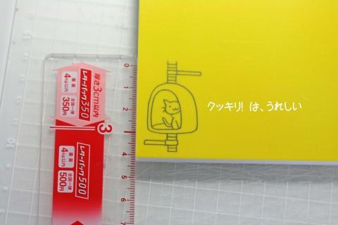 20110522-150308-005のコピー