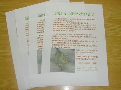 s-DSCN9848.jpg