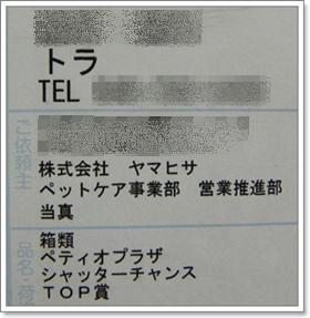 20110223-01