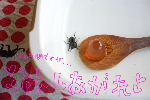 2010_0527_03.jpg