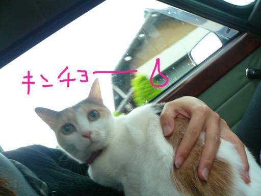 2010_0702_02.jpg