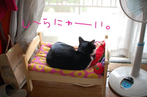 2010_0713_01.jpg