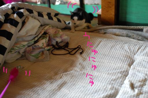 2010_0713_07.jpg