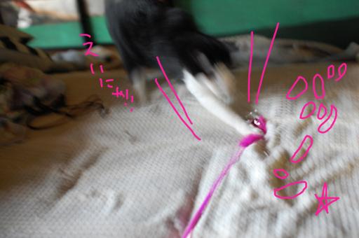2010_0713_08.jpg