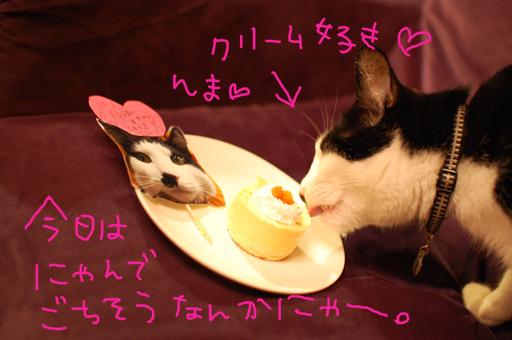 2010_0713_10.jpg