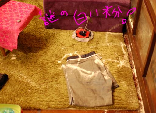 2010_1029_02.jpg