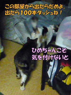 100302-09.jpg