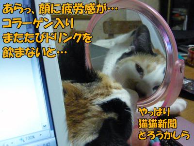 100320-04.jpg