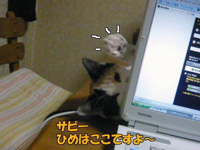 100321-03.jpg