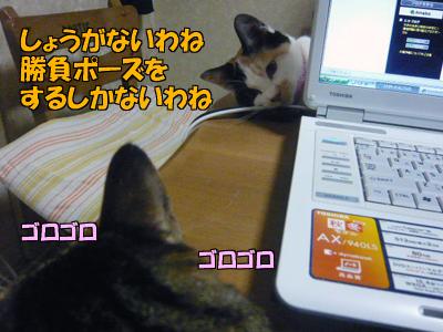 100321-06.jpg