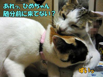 100510-04.jpg