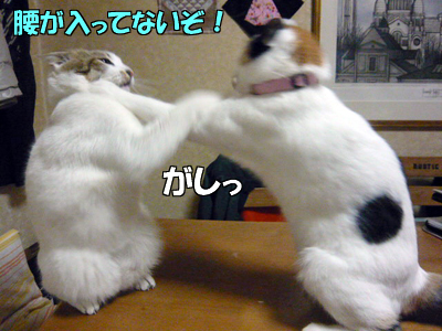 100516-06.jpg