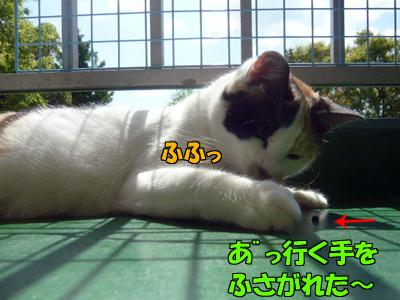 100517-05.jpg