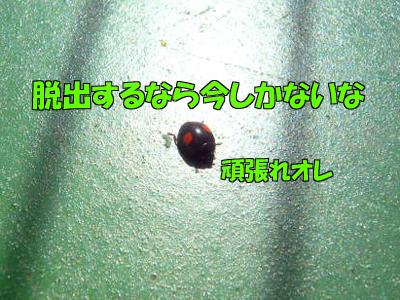 100517-08.jpg