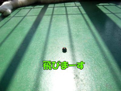 100517-09.jpg