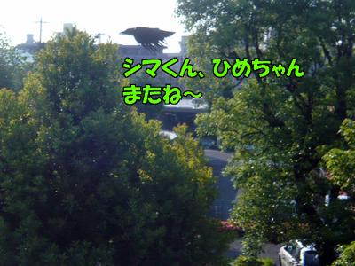 100603-04.jpg
