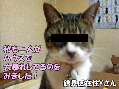 100609-06-4.jpg