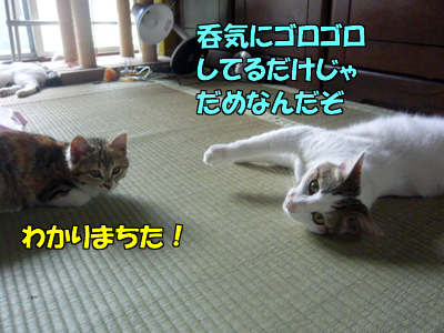 100616-07.jpg