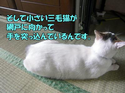 100623-03.jpg