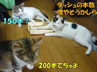 100801-12.jpg