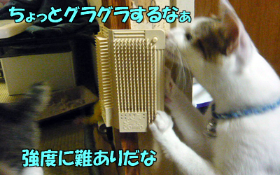 100818-04.jpg