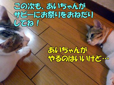 100901-12.jpg