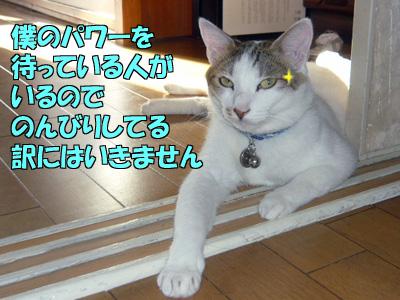 100905-02.jpg