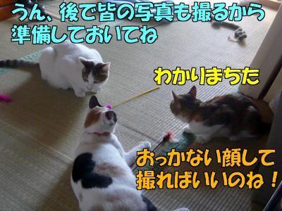 101111-03-1.jpg