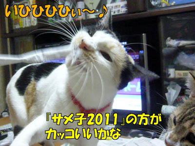 110106-09.jpg